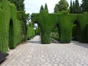 azur-elagage-entretien-espaces-verts (6)